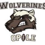 2 Logo Wolverines JPG