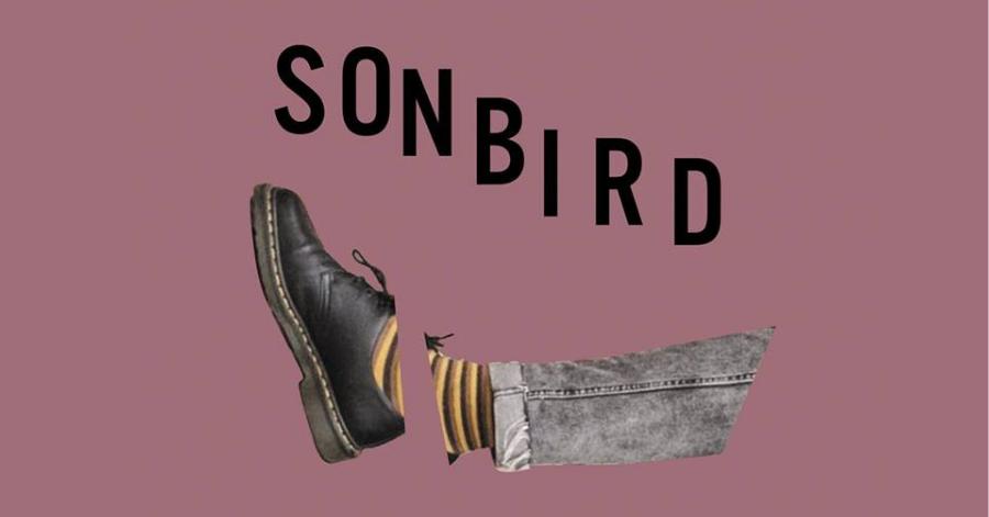 Sonbird – Głodny. Recenzja płyty.