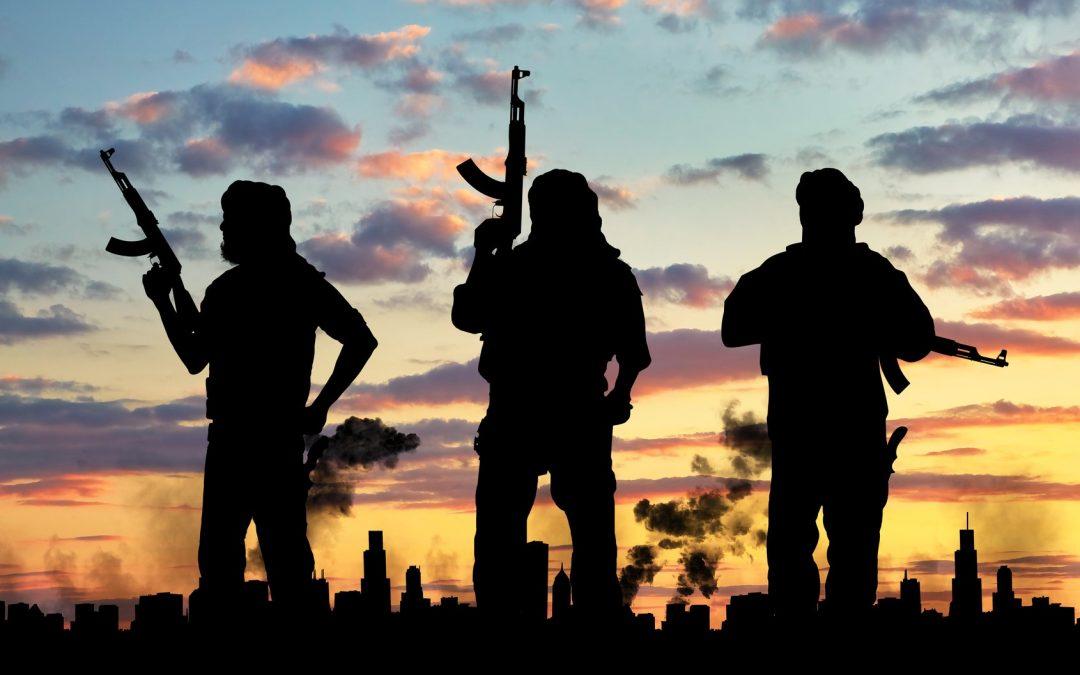 Terroryzm w formie?